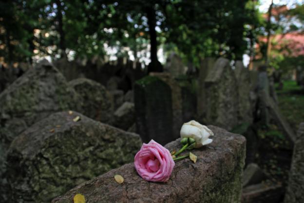 Eine rosafarbene Rose liegt auf einem Grabstein.